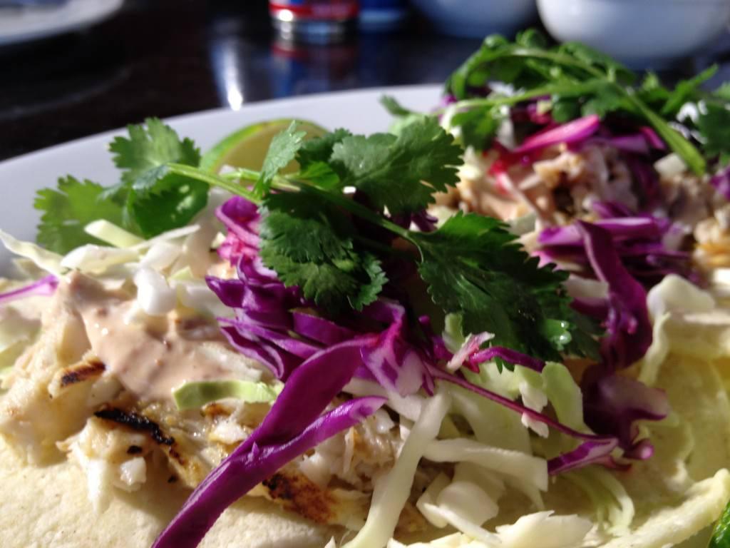 Grilled fish tacos with chipotle yogurt sauce for Greek yogurt fish taco sauce